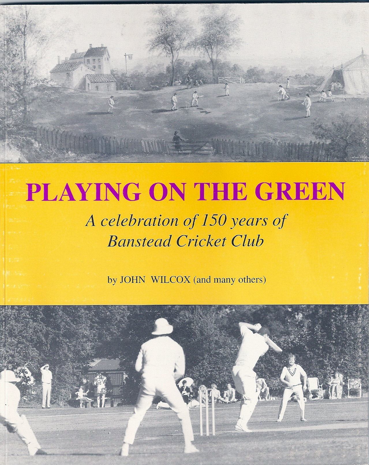 playing_on_the_green