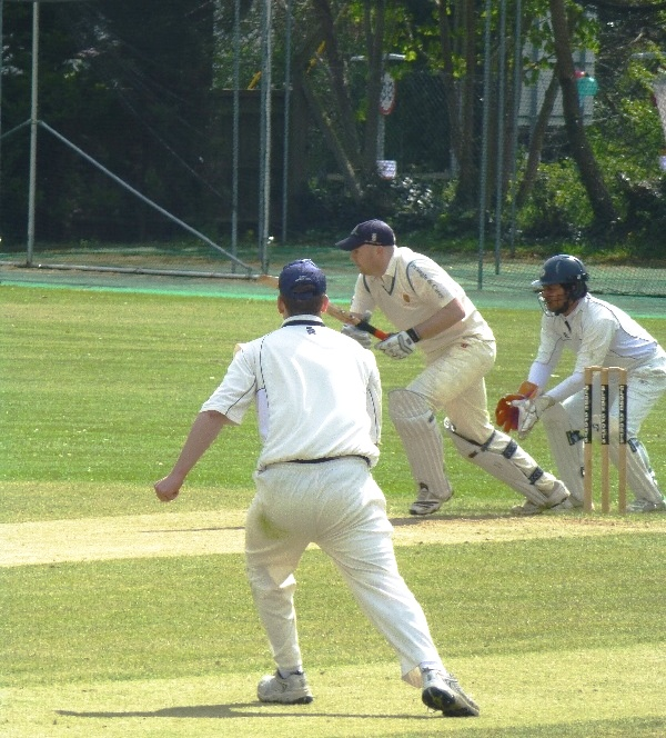 Cricket_photo