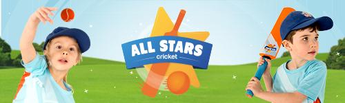 Ecb allstars cricket banner