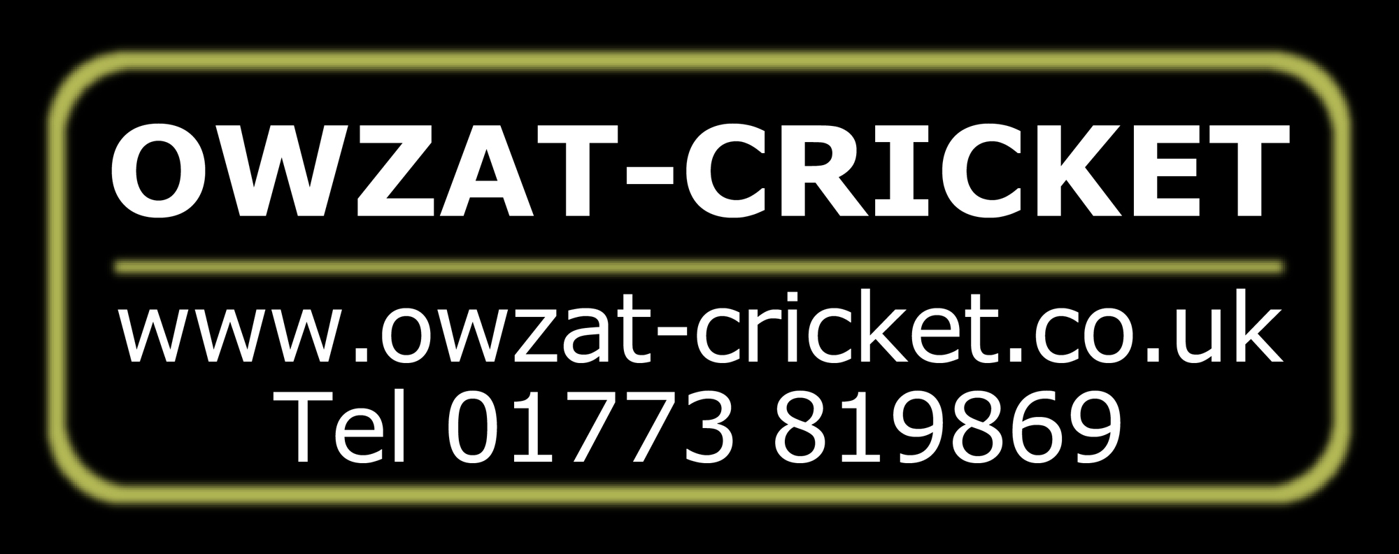 Owzat-Cricket