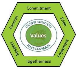 Ammanford_cc_6_Values