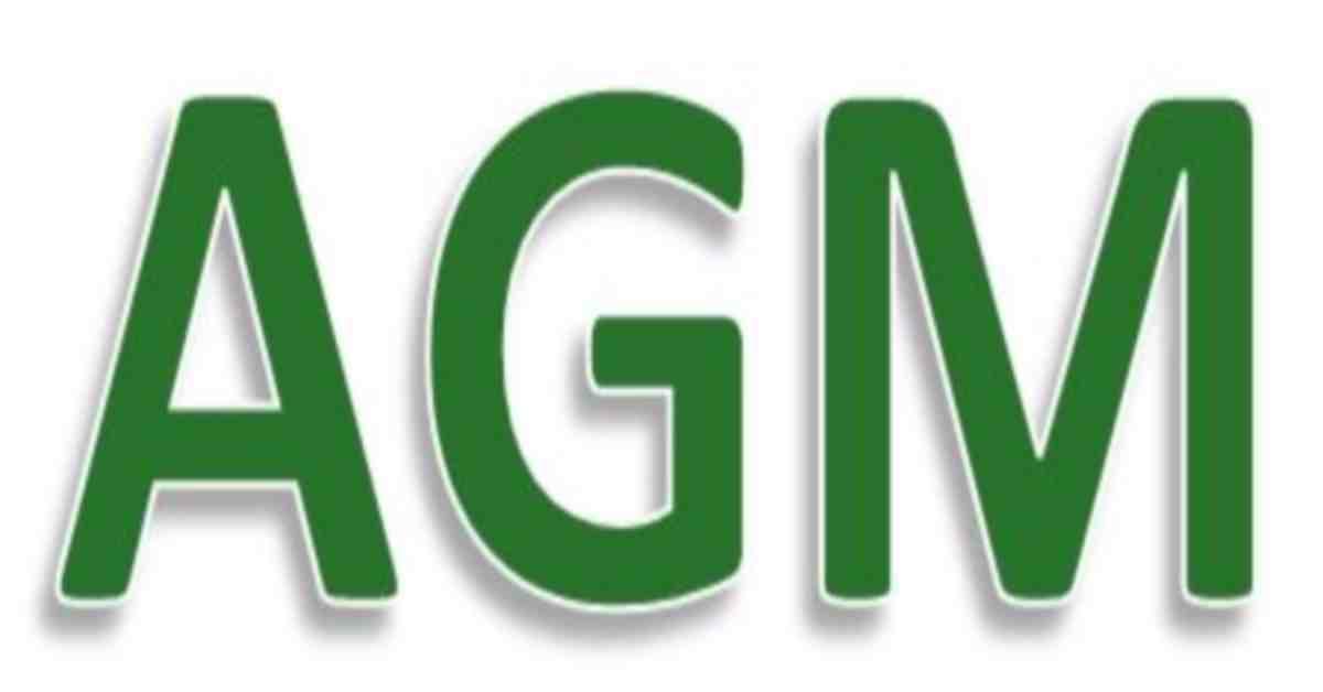 AGM2017-3